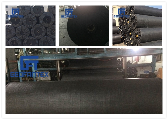 Plastic PP Black Woven Geotextile fabric