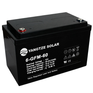 12V 60Ah Lead Acid Battery