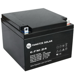 12V 24Ah Lead Acid Battery