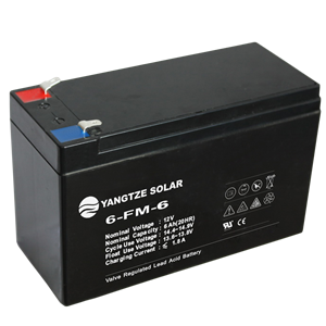 12V 6Ah Lead Acid Battery