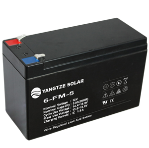 12V 5Ah Lead Acid Battery