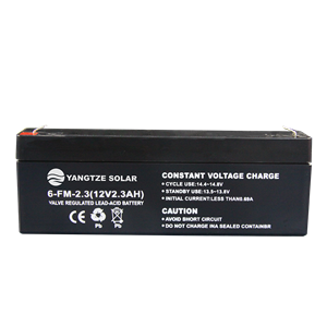 12V 2.5Ah Lead Acid Battery