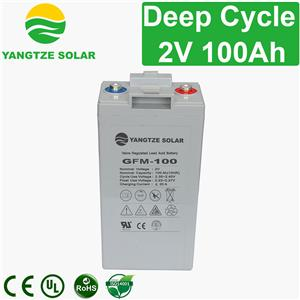 2V 100Ah Deep Cycle Battery