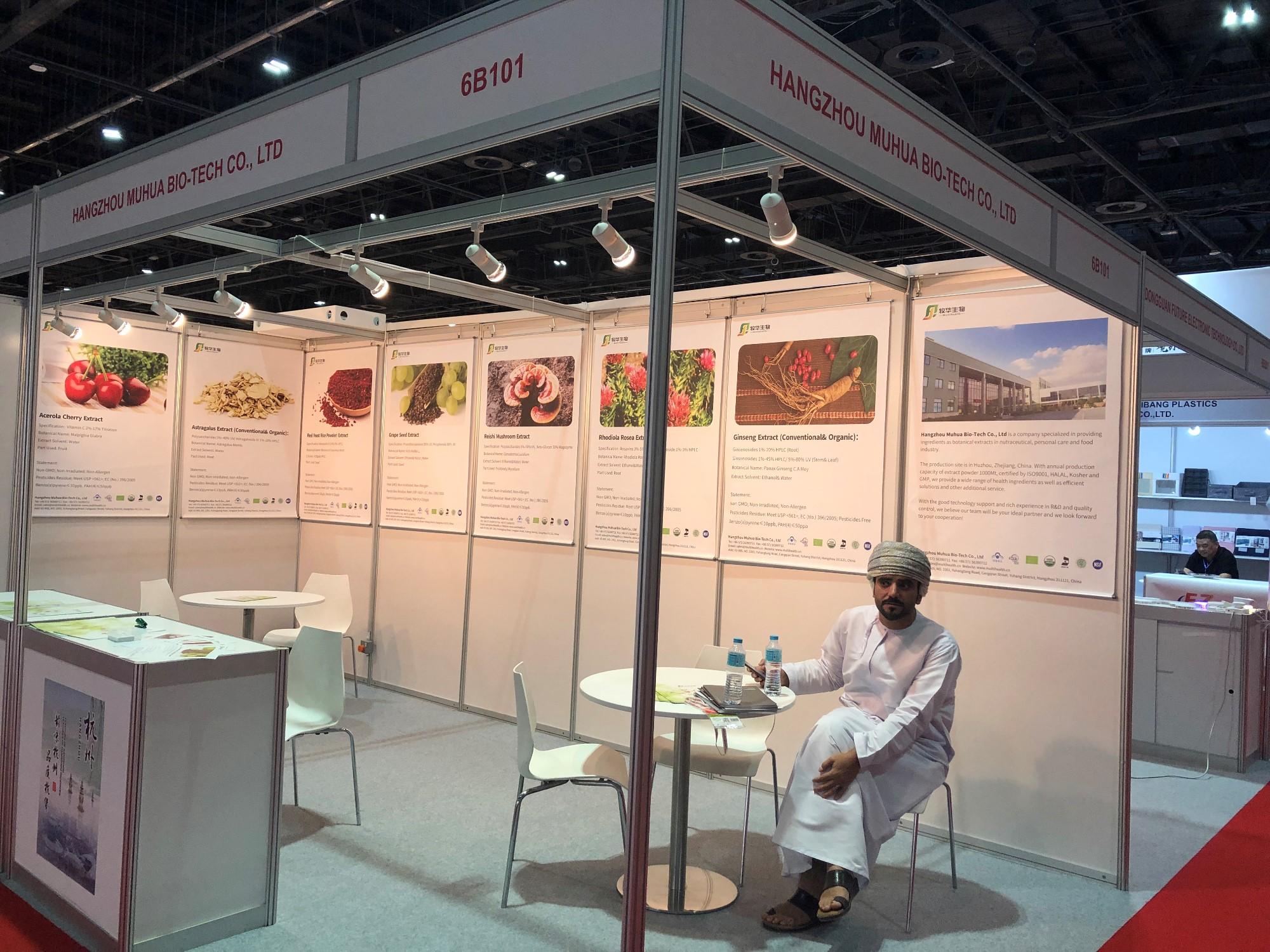 Dubai Expo 2019