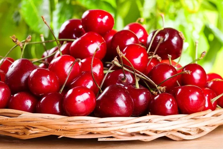 Acerola Cherry Extract Manufacturers, Acerola Cherry Extract Factory, Supply Acerola Cherry Extract