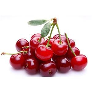 Acerola Cherry Extract