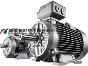Motor in pump station