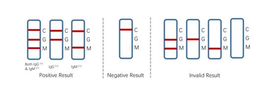 COVID-19 Rapid Antibody Test Kits