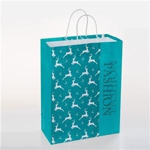 Branded Paper Bags with Handles