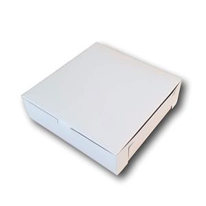 Custom Plain Pizza Box