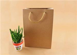 The Difference Between Paper Bags And Kraft Paper Bags
