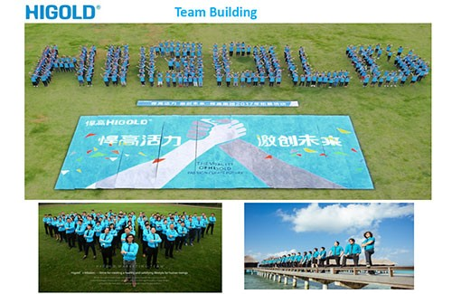 Higold 팀 빌딩