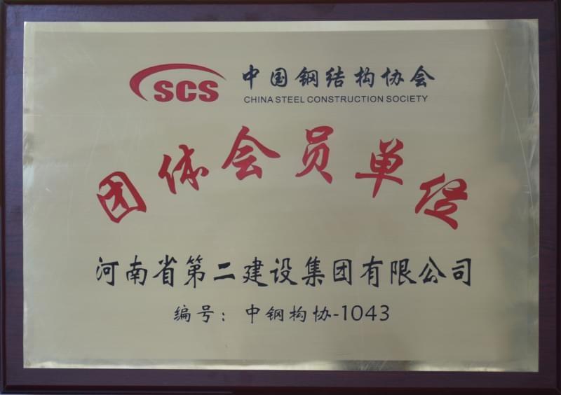 Member of China Steel Construction Society