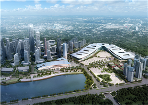 International Expo City Steel Framework Construction Project