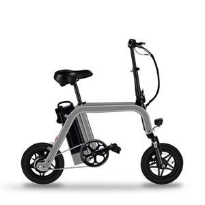 12 Inch Motor 2 Wheel Electric Bicycle Rear Drive Portable Folding Electric Bike