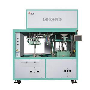 Pulses Rice Grian Vacuum Packaging Machine