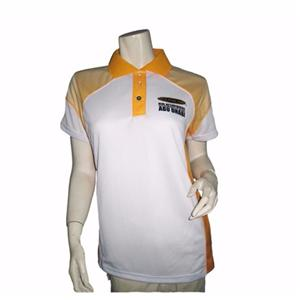 Dry Fit Silk Screen Printing Polo Shirt