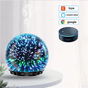 250ml Smart Oil Diffuser,Work With Alexa