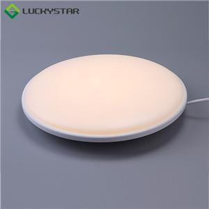 IP54 Rated CCT Selectable LED Ceiling Lamp 250MM