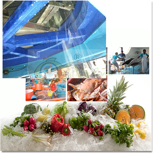The Application of Ice Machine in Aquatic Product