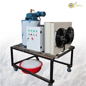 Small industrial ice machine 5Ton/Day