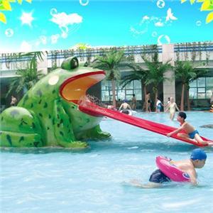 Funny aqua spray animal fountain equipment frog slides water park