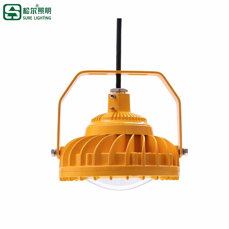 50W 100W ATEX Certificate Gas Explosion Proof Led Light