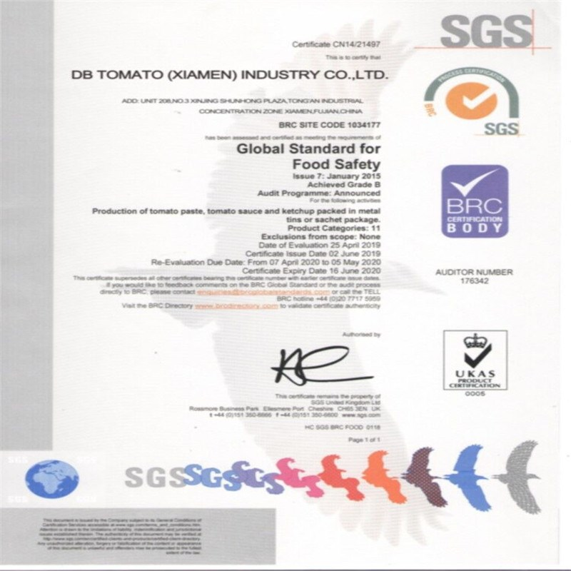 Teste SGS