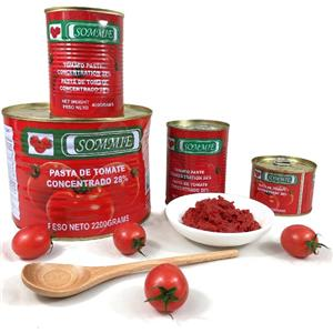 2200g Canned Tomato Paste Tomato Sauce