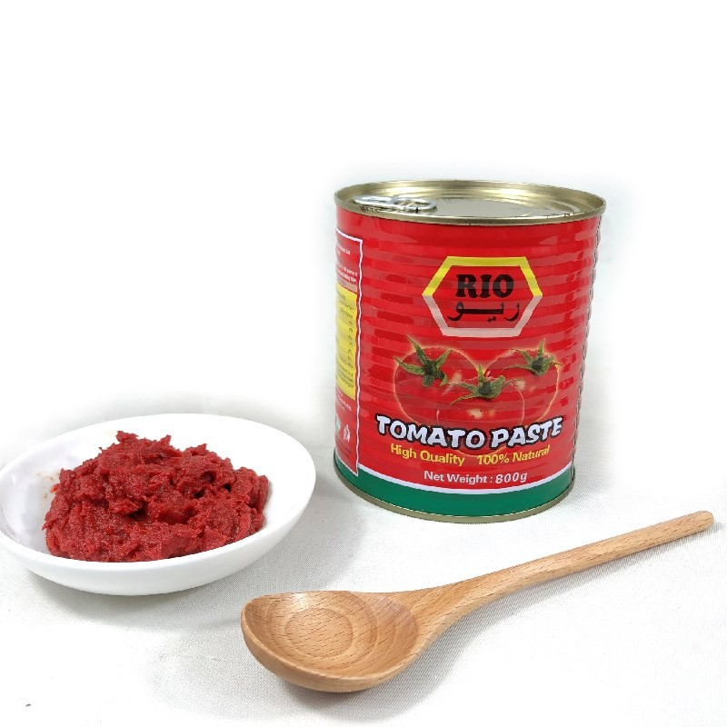 Comprar 800g de molho de tomate em pasta de tomate enlatado,800g de molho de tomate em pasta de tomate enlatado Preço,800g de molho de tomate em pasta de tomate enlatado   Marcas,800g de molho de tomate em pasta de tomate enlatado Fabricante,800g de molho de tomate em pasta de tomate enlatado Mercado,800g de molho de tomate em pasta de tomate enlatado Companhia,