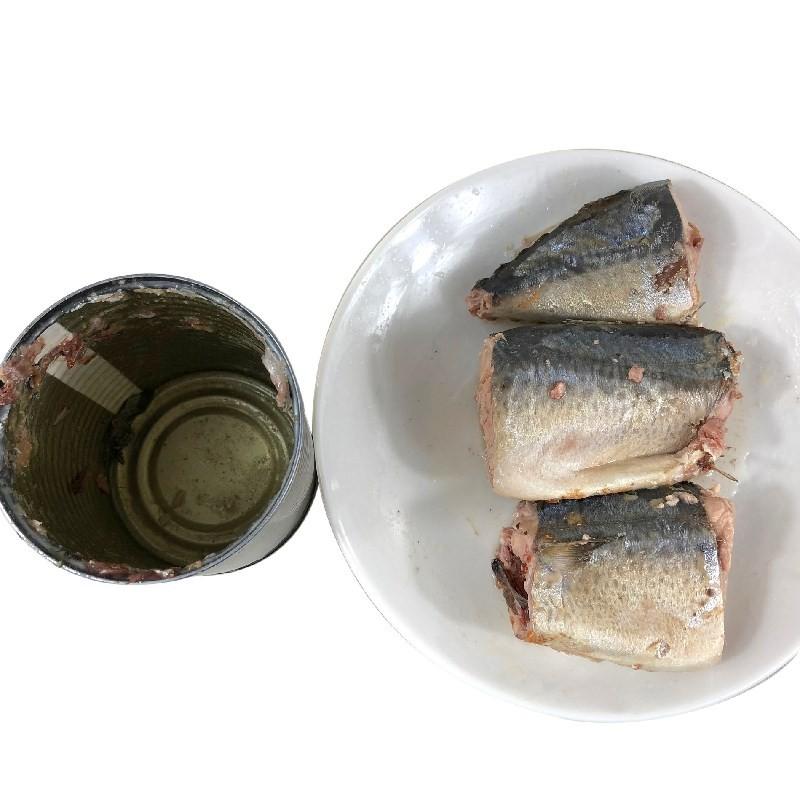 425g Canned Mackerel in Brine Manufacturers, 425g Canned Mackerel in Brine Factory, Supply 425g Canned Mackerel in Brine
