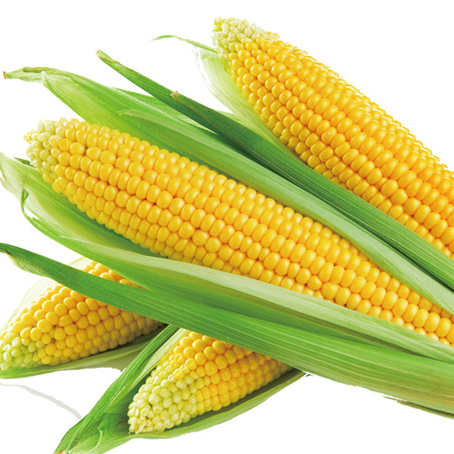 Sweet corn aroma