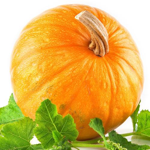 Boiled pumpkin aroma