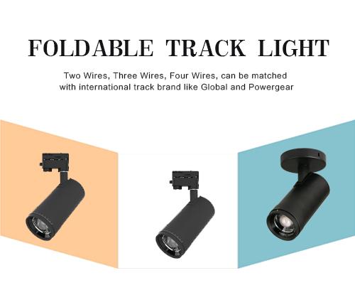 focus track light