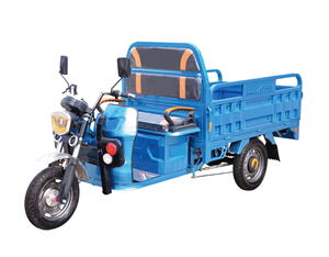 Cargo Electric Battery Operated Tricycle