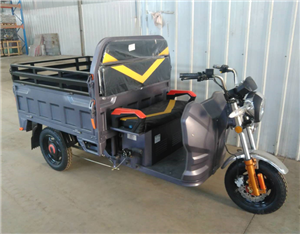 Cargo Electric 3 Wheel Motorcycle