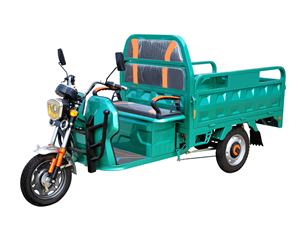 Heavy Duty 1000W/1200W Cargo Electric Tricycle
