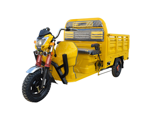 Electric Tricycle Motorcycle