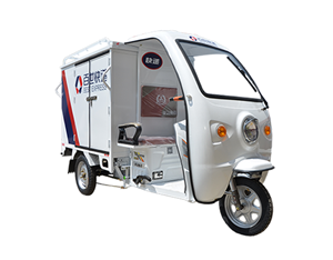 Adults Cargo Deliver Electric Tricycle