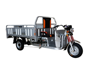 Powerful Electric Cargo Tricycle 1500W