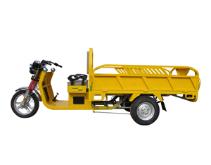 Big Motor 1500W 1000kg Loading Electric Tricycle