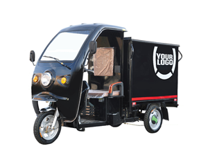 3 Wheels Electric Tricycle With Cabin