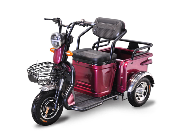 Electric Passenger Scooter for Elder