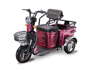 Electric Passenger Scooter for Elder