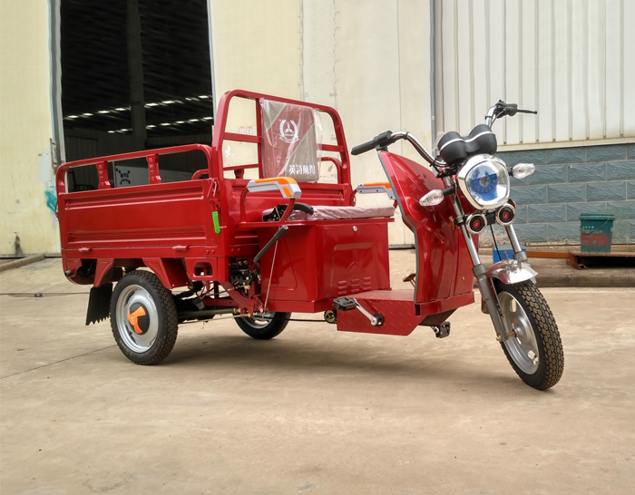 Pedal Electric Cargo Trike