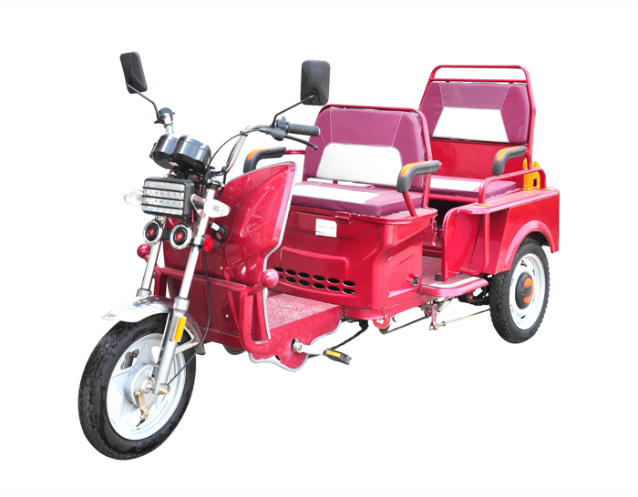 Passenger Pedal Electric Trike