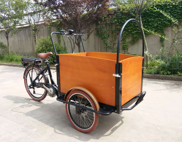 Electric Lithium Battery Cargo bike with pedal