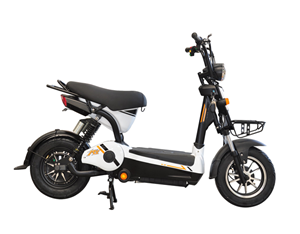 New Design 2 Wheels Adult Electric Bike/scooter