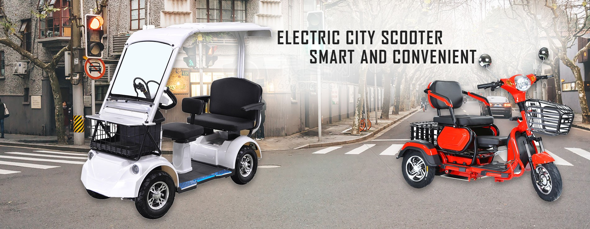 Smart Passenger Electric Scooter