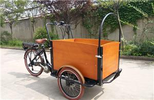 Sales promotion For Electric Cargo Bike FOB 615USD/PCS!!!